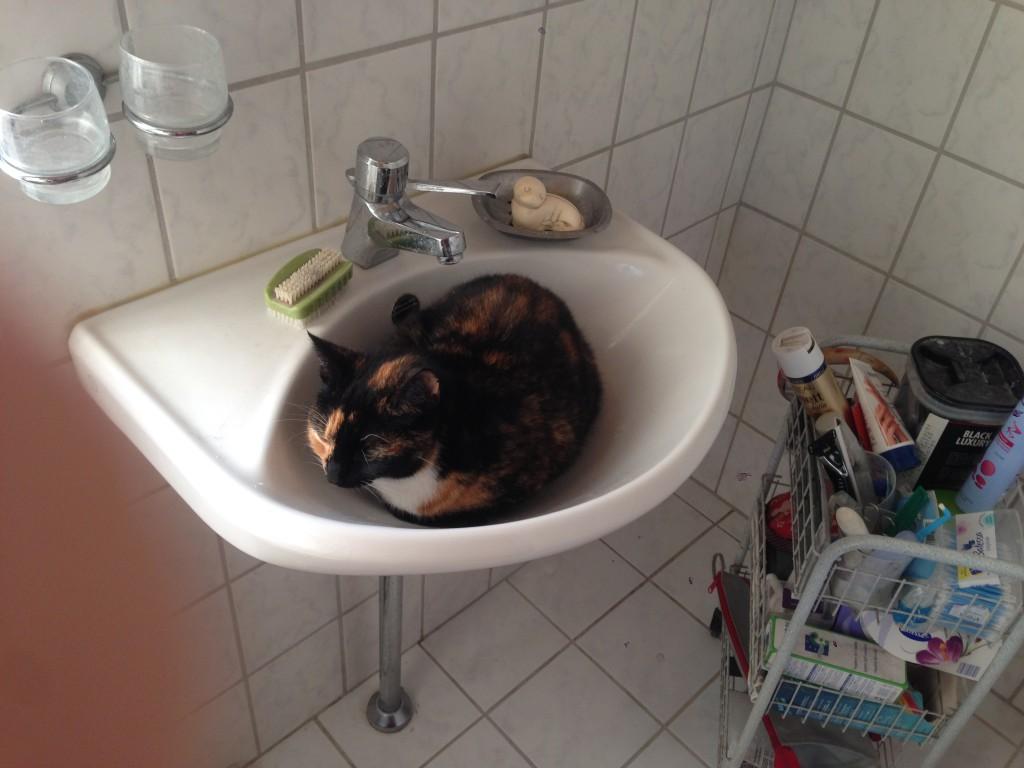 Felicia i håndvasken