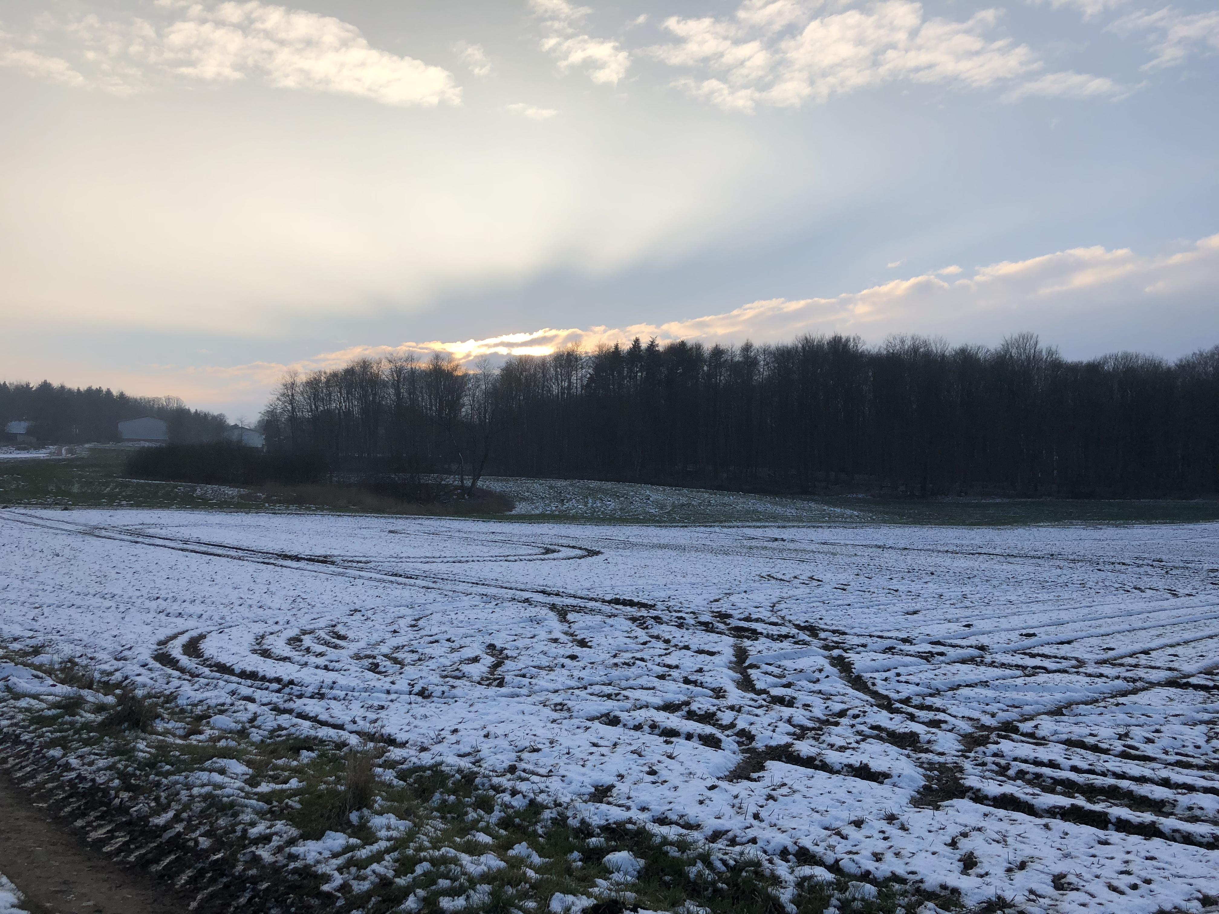Vinter i Harzhof 2018