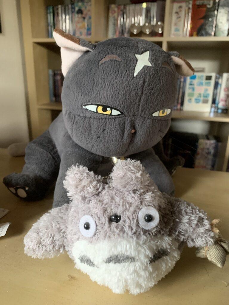 Mikoto fra MyOtome og en fluffy Totoro