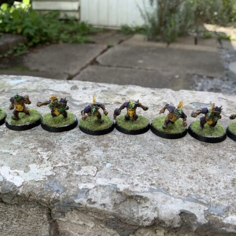 Goblins, Purple Bruizas, Goblin Team [Blood Bowl]